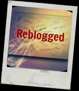 reblogged picture 2