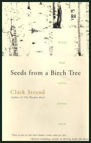 Clark Strand