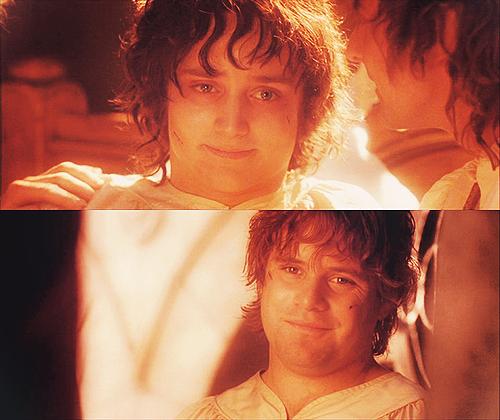 Frodo Gay 108
