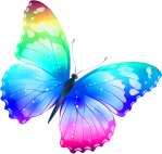 butterfly_png1041