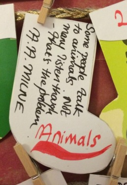 day-8-animals